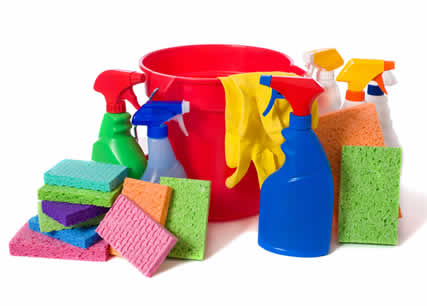 online cleaning supplies