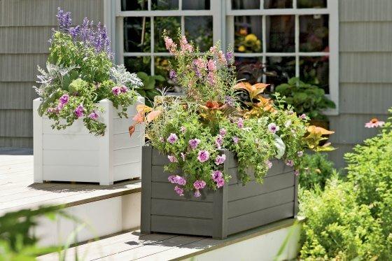 self-watering-urban-gardening