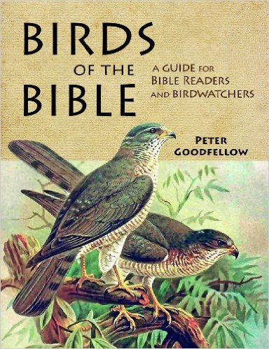 birds-of-the-bible