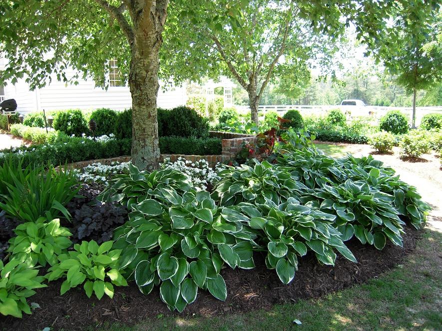 Garden-Designs-full-shade